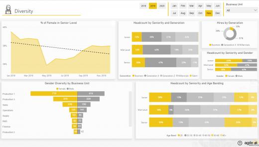 Agile HR Analytics - Diversity