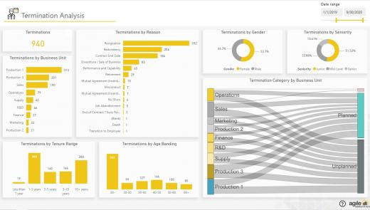 Agile HR Analytics - Termination Analysis